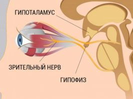 8 шагов к улучшению и восстановлению зрения. Работает, даже если ты носишь очки!