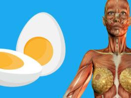 9 вещей, которые произойдут с вашим телом, если стать есть по 2 яйца на завтрак