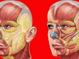 Упражнение «Полотно»: Сохраняет  упругость кожи с помощью тренировки