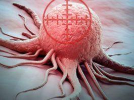 8 продуктов, которые блокируют метастазы рака