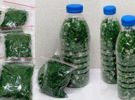 Чтобы не покупать зимой зелень, делай так