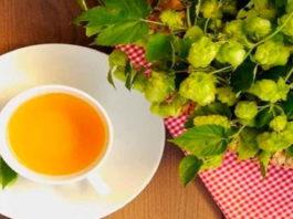 Необыкновенный, но всеми забытый чай: «хмельной чай» для чистых сосудов и крепкого сердца
