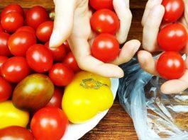 Зимой больше не покупаю помидоры. Супер способ хранения помидоров круглый год