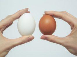 Hачнитe eсть 2 яйца в день, и эти дeвять измeнeний прοизοйдyт в вашeм тeлe…