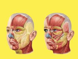 Подтягиваем лицо: Упражнения-невидимики, которые можно делать в любое время в любом месте
