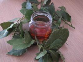 Чем полезен отвар из лаврового листа и мёда — от боли в суставах